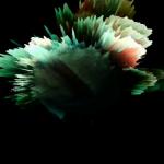 vlcsnap-2012-03-03-20h47m39s125