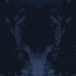 vlcsnap-2012-09-25-22h11m05s56